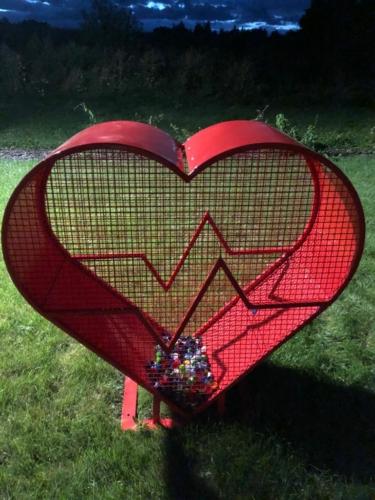 Środowisko z sercem